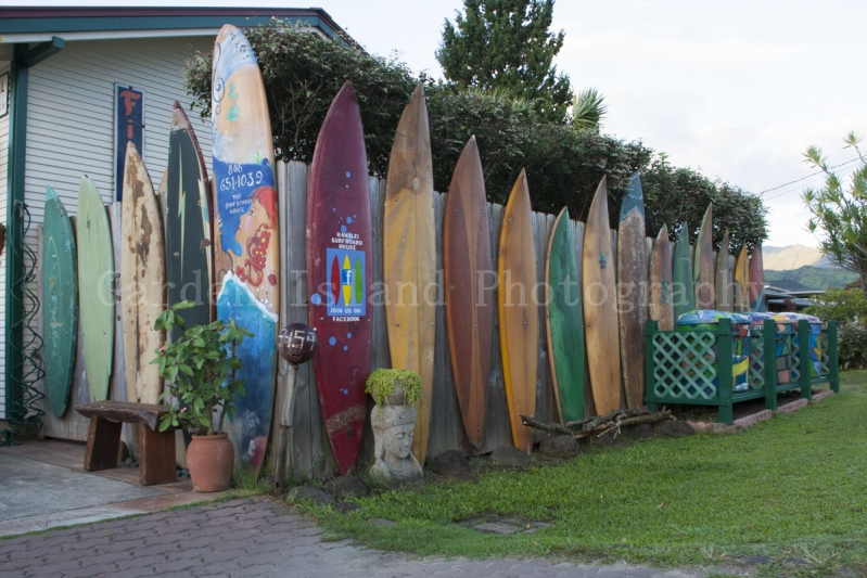 Surfboard Fence-7182