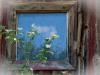 Window with Cloud -3490