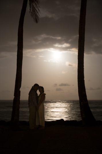 Kauai Engagement Photo -1556