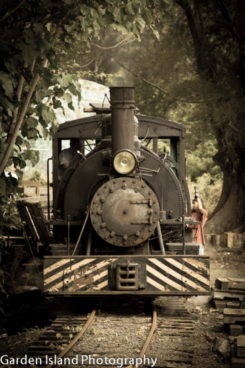 train-0113