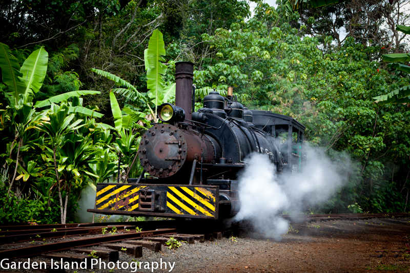 train-5062