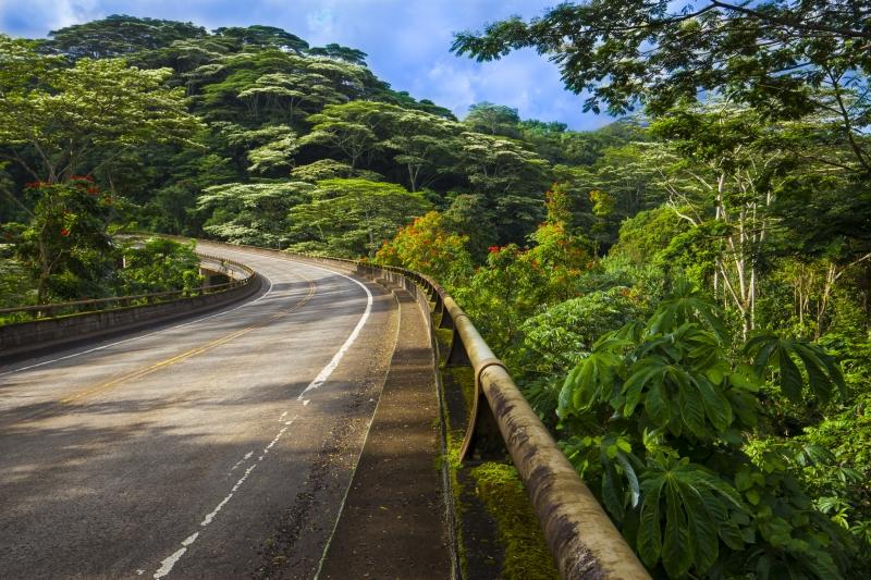 Kauai Landscape Kalihiwai Bridge-0031