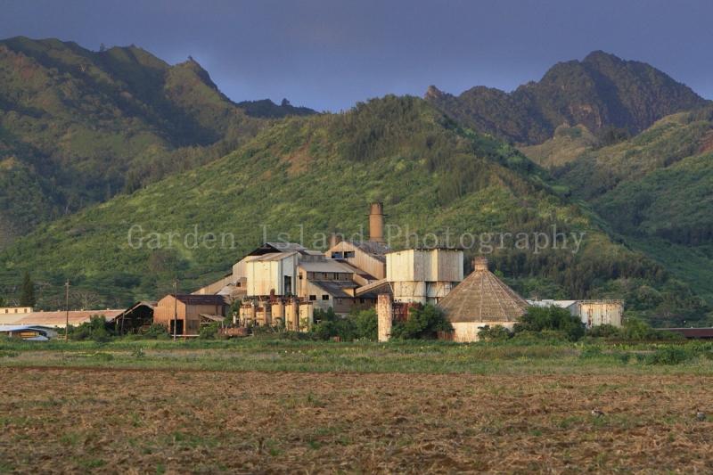 Koloa Sugar Mill 4234