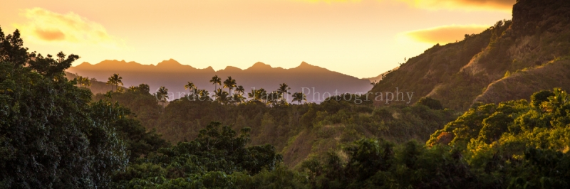 Jurassic Sunset 0293