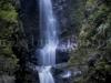 Makalea Falls -0780