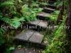 Alakai Swamp Hike -3728