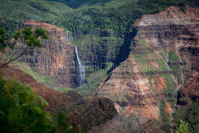 Waimea Canyon-2278
