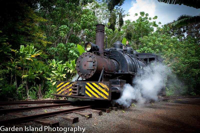 train-5066