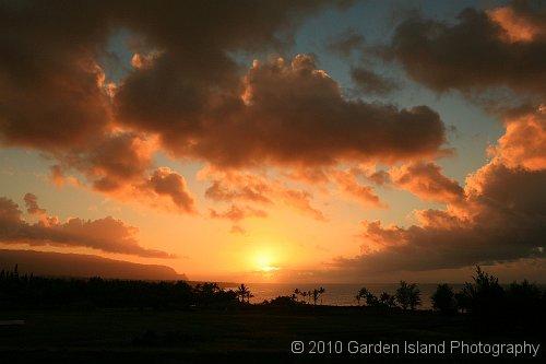 Kilauea Lighthouse Rd Overview2768