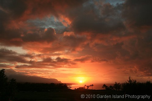 Kilauea Lighthouse Rd Overview2903