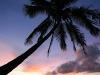 Anini Beach 5992